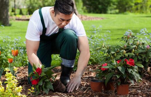 Gardener-Gallery-image-7