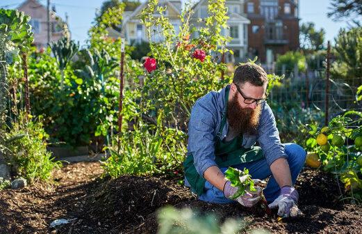 Gardener-Gallery-image-8