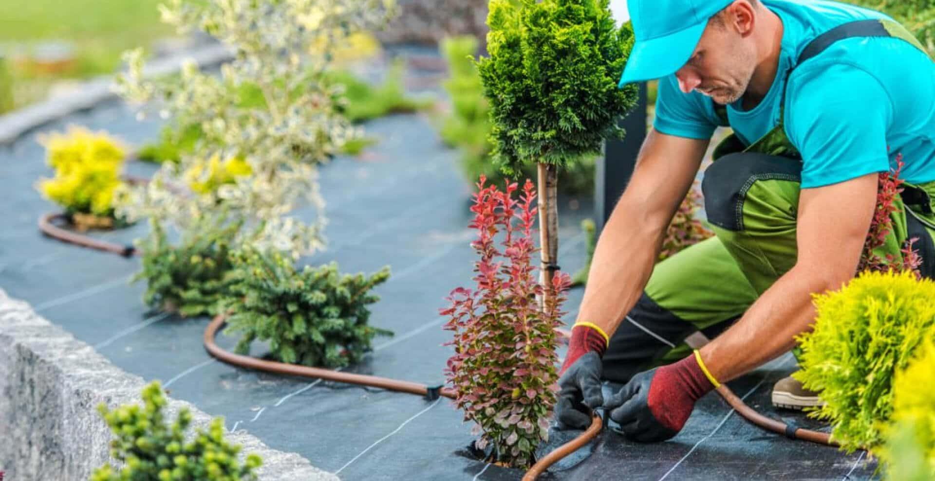 garden-care