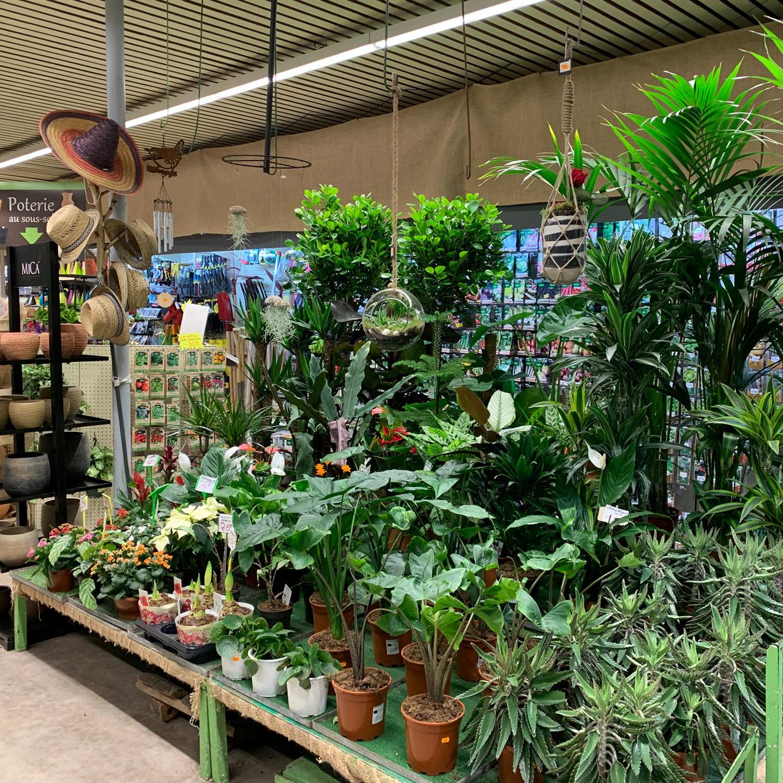 au-parfait-jardinier-photo-2