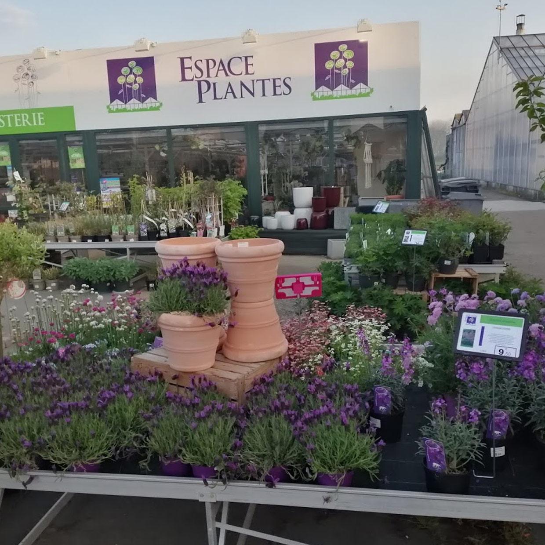espace-plantes-2