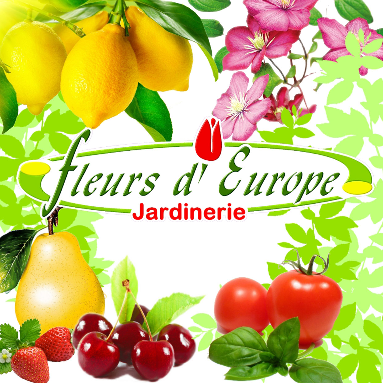 fleurs-europe-photo-logo