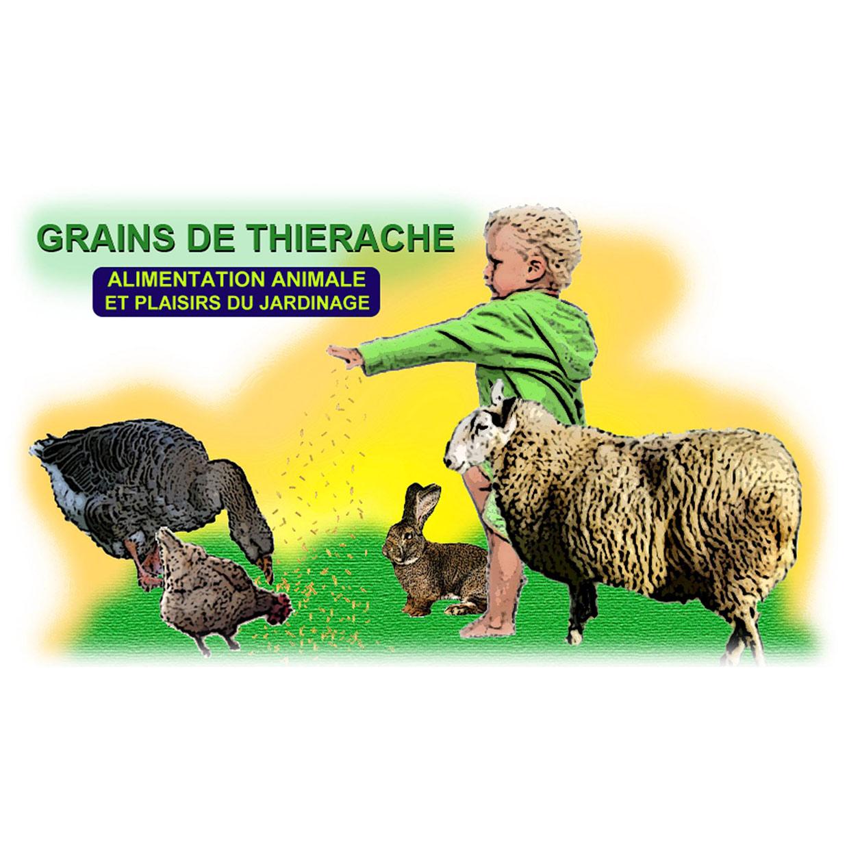 grains-de-thierche-logo