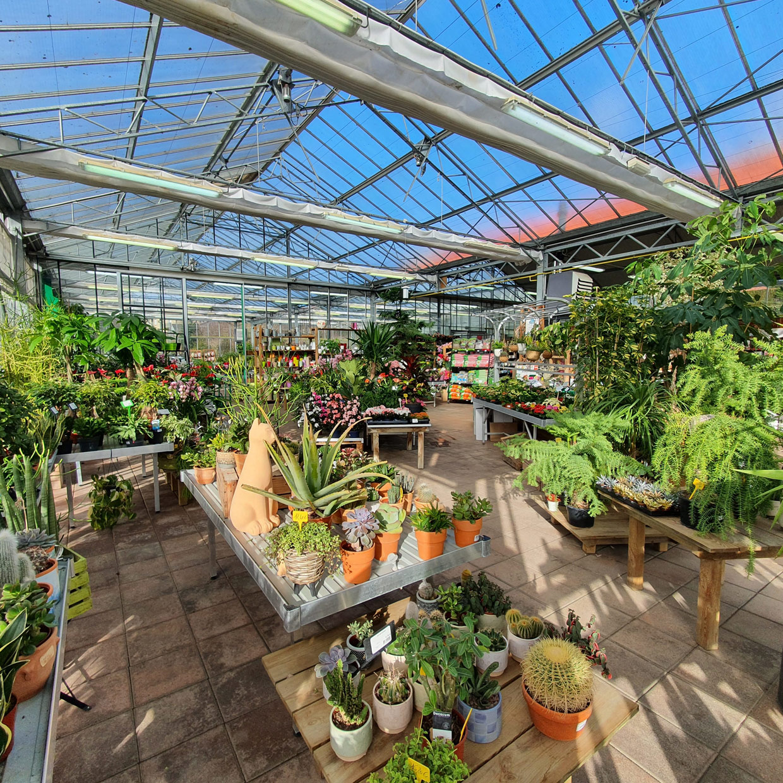 jardinerie-de-letoile-3