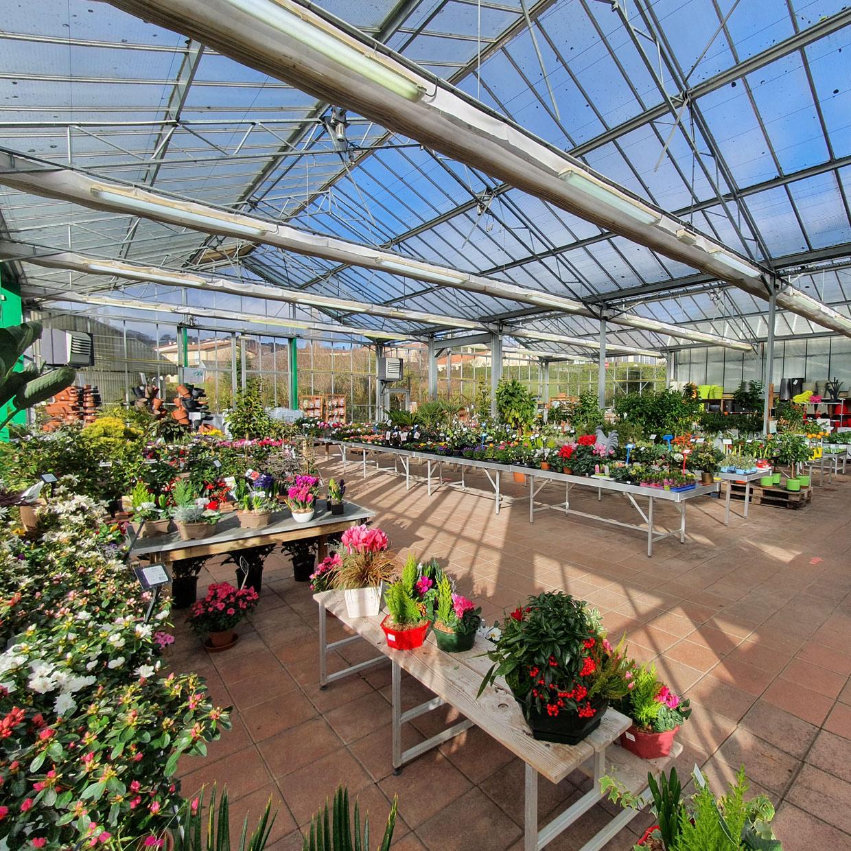 jardinerie-de-letoile-4