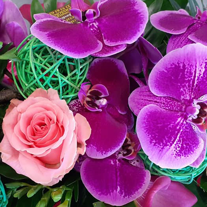 les-halles-aux-fleurs-2