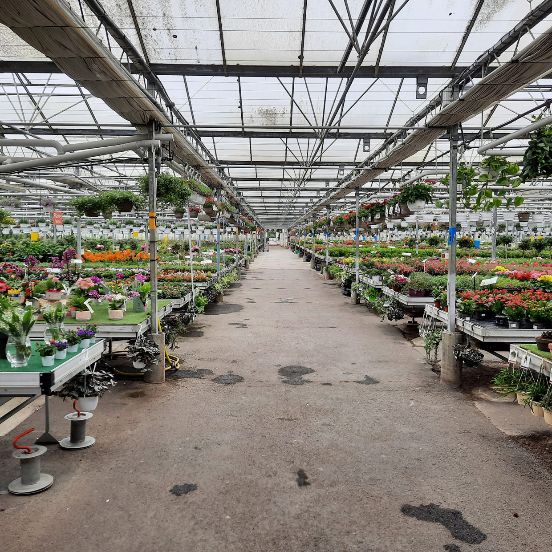 jardinerie-boncap-bordere-2