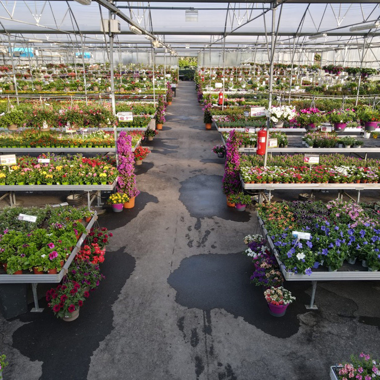 jardinerie-boncap-lescar-7
