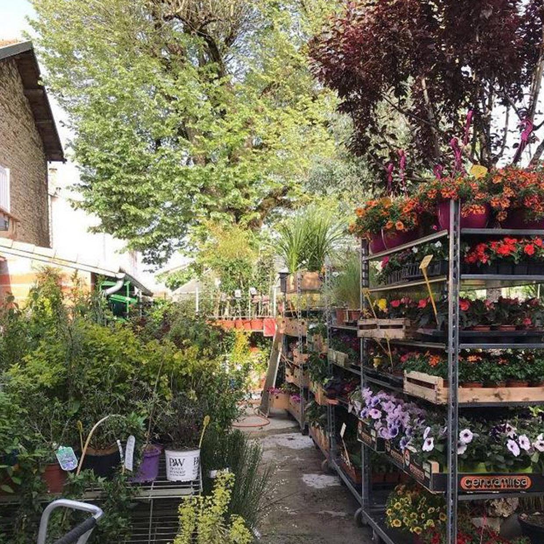 jardinerie-dupin-4