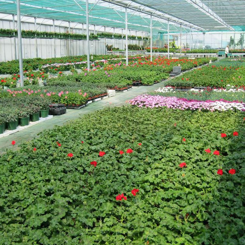 jardinerie-estuaire-2