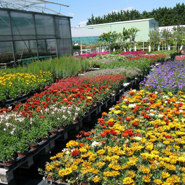 jardinerie-estuaire-3