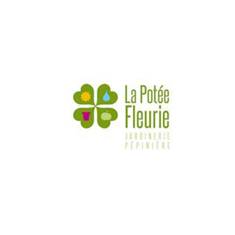 la-potee-fleurie-7