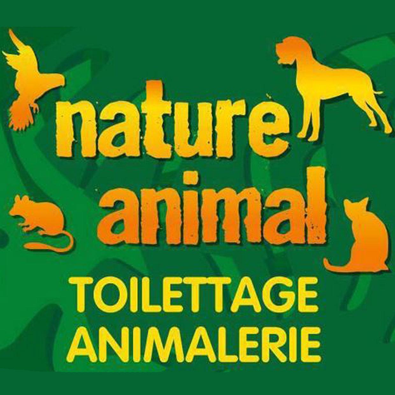nature-animal-6