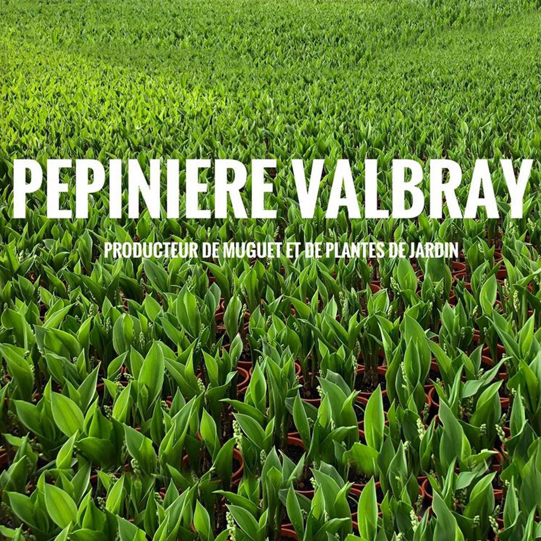 pepiniere-valbray-5